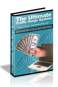 13-The Ultimate Traffic Surge System