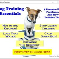 Free WSO - Dog training essentials review - Rebrandable software giveaway Review