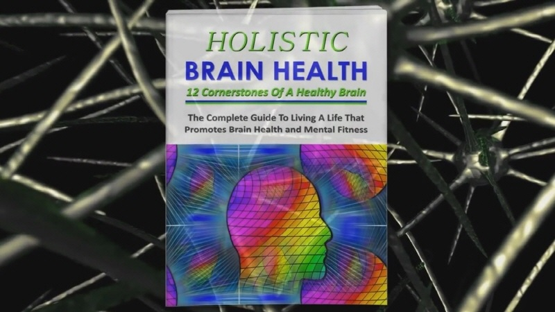 Holistic Brain Health and Mental Wellness 270 Piece PLR Pack Review